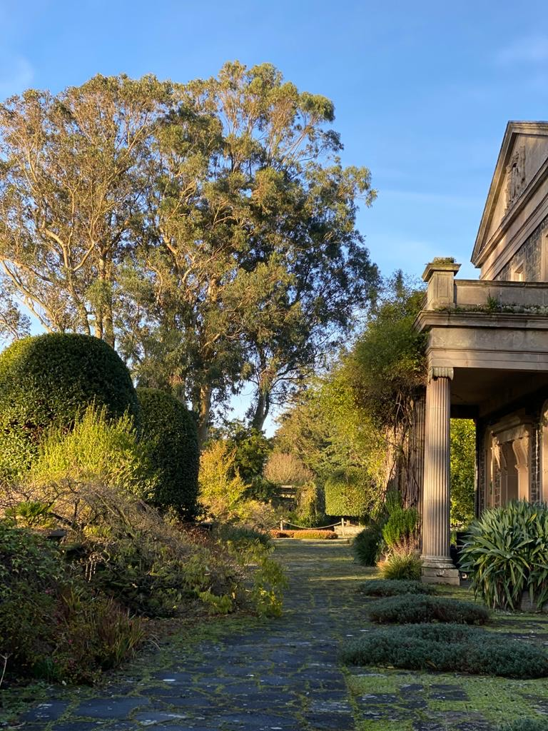 Mount Stewart side view with gum tree in background